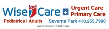 WiseCare Logo (July 2018) JPEG copy
